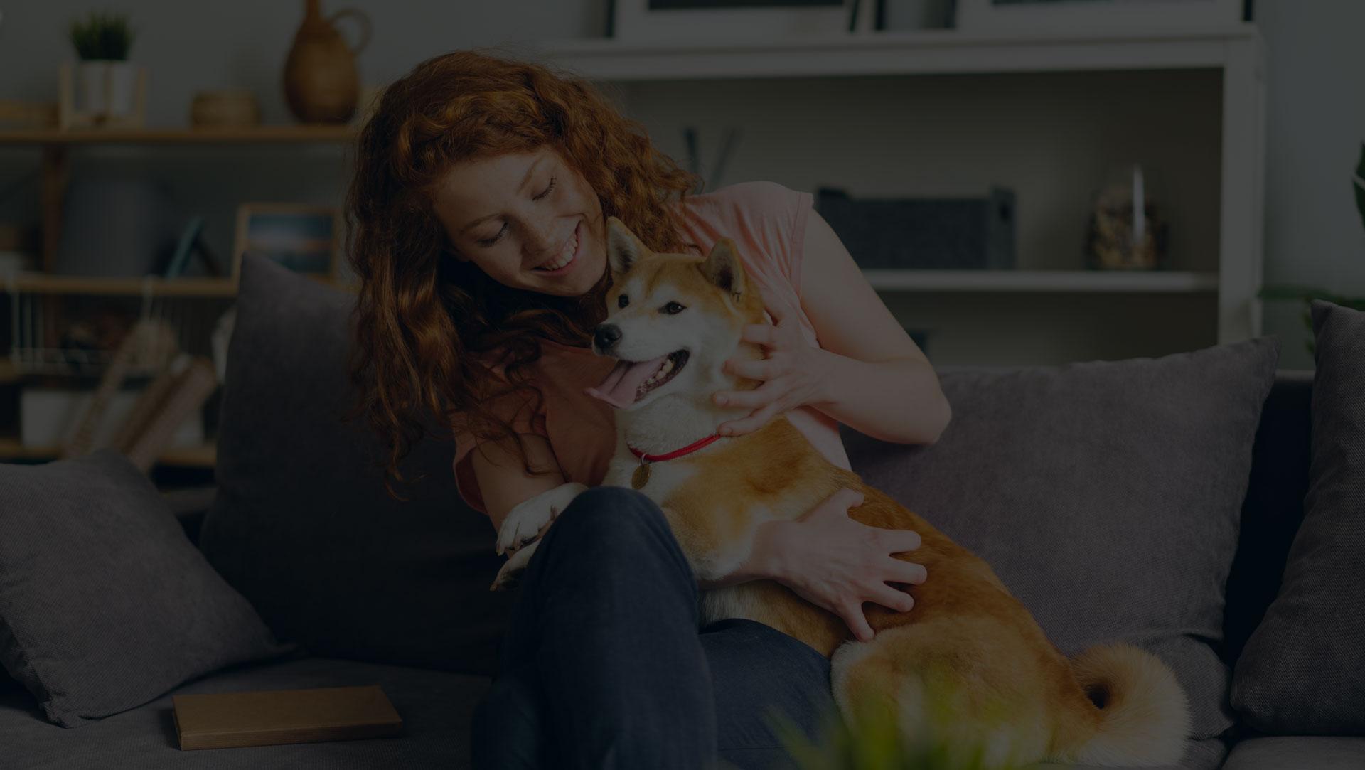 Guide pour bien vivre avec un animal